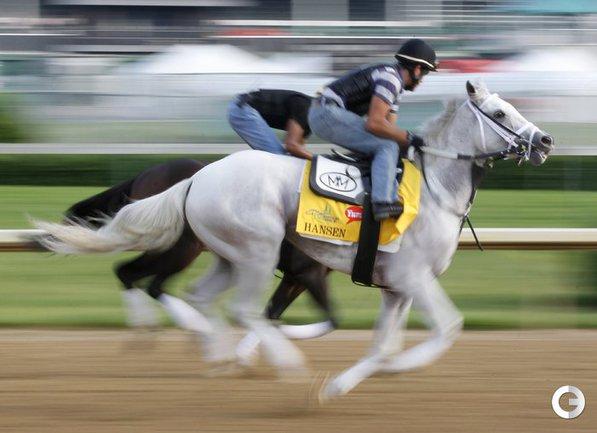 Лошади в Луисвилле.