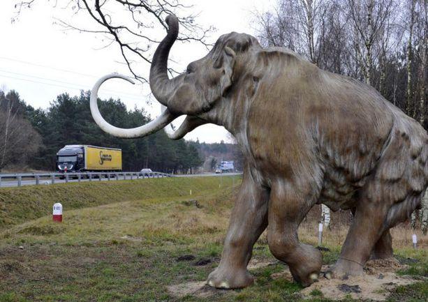 """Вот такой пластмассовый мамонт в натуральную величину повстречался бригаде """"СЭ"""" по дороге от Познани до Гданьска. Фото Александра ФЕДОРОВА, """"СЭ"""". Фото """"СЭ"""""""