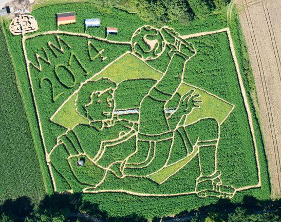 """Семейная пара немецких фермеров потратила несколько месяцев, чтобы создать видимое пролетающим мимо самолетам поле-""""открытку"""" в честь чемпионата мира-2014. Фото AFP"""