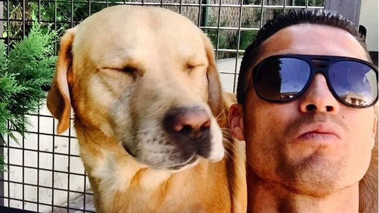 КРИШТИАНУ РОНАЛДУ и его собака. Фото instagram.com/cristiano