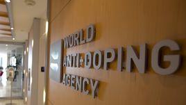 езависимая комиссия Всемирного антидопингового агентства (ВАДА) рекомендовала отстранить российских легкоатлетов от всех соревнований, включая Олимпийские игры в Рио-де-Жанейро.