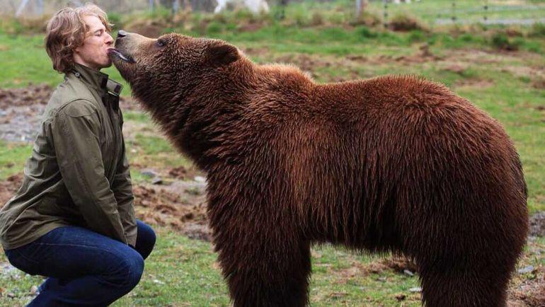 Дэвид БУТ и медведь.