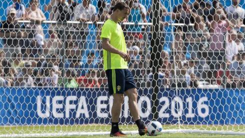 Ибрагимович готовится к Euro