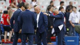 Перед финалом Euro-2016 Дешама атаковали насекомые