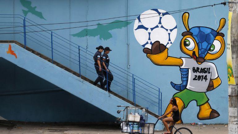 Броненосец Фулеко (Бразилия, 2014). Фото REUTERS