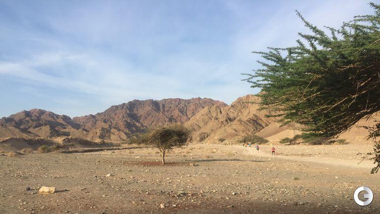 """Сегодня. Эйлат. Пустынный марафон. Фото """"СЭ"""""""