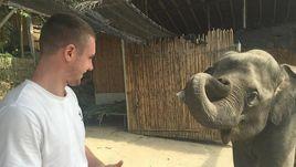Александр СЕЛИХОВ и слон.