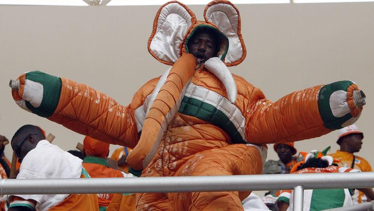 Болельщик сборной Кот-д'Ивуара. Фото AFP