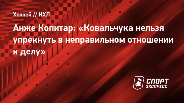 Анже Копитар: «Ковальчука нельзя упрекнуть внеправильном отношении кделу»