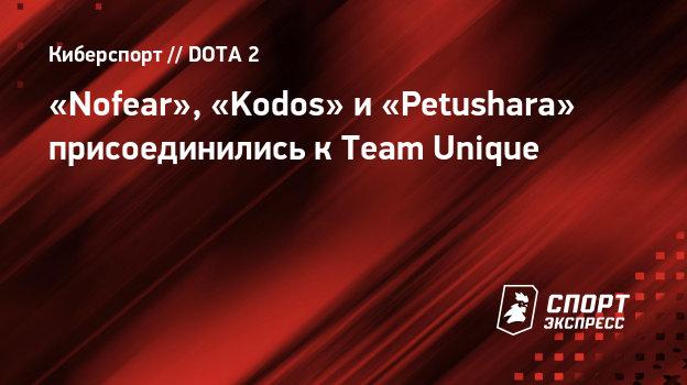 «Nofear», «Kodos» и «Petushara» присоединились кTeam Unique