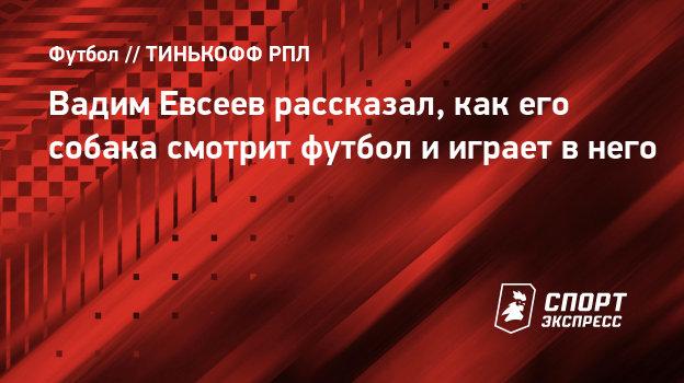 Вадим Евсеев рассказал, как его собака смотрит футбол ииграет внего