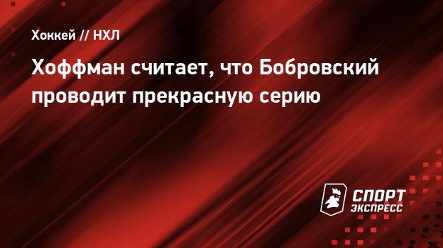 Хоффман считает, что Бобровский проводит прекрасную серию