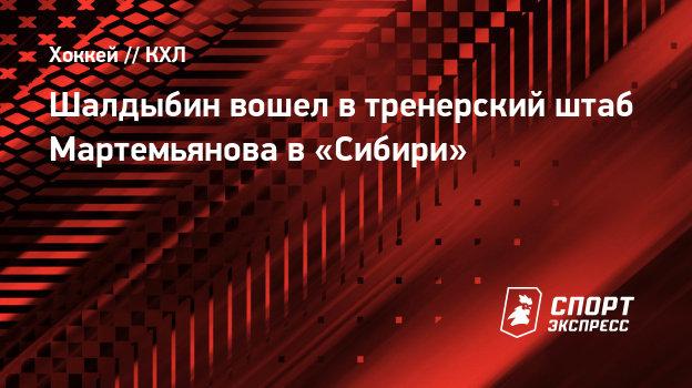 Шалдыбин вошел втренерский штаб Мартемьянова в «Сибири»